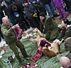 rabat zoo odense Body todelt København