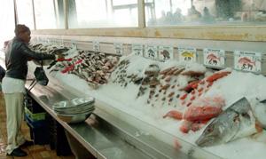Fiskebutikken i Harlem har mye bedre utvalg enn vi er vant med   her hjemme. (Foto: Ronald Toppe)