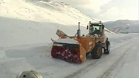 fjellov2jpg (Foto: TV 2)