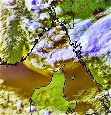 skogsbrann3_dmi (Foto: NOAA/DMI)
