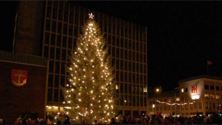 JULEGRAN I FARE: Narvik kommune tapte så mye penger på Terra-skandalen at den ikke har råd til lys på julegranen.  (Foto: www.ot24.no)