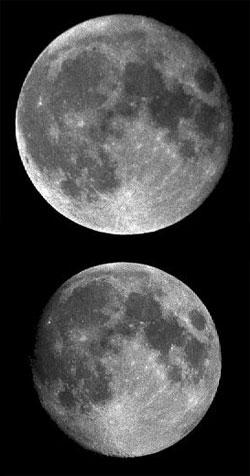 Så stor er forskjellen! (Foto: John Walker)