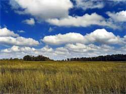 Vi er vant til at skyene blir mindre mot horisonten fordi de er lengre unna. (Foto: Wikimedia Commons)