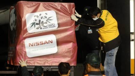 Pandaene ble fraktet i et chartret fly tirsdag.  (Foto: AFP/SCANPIX/)