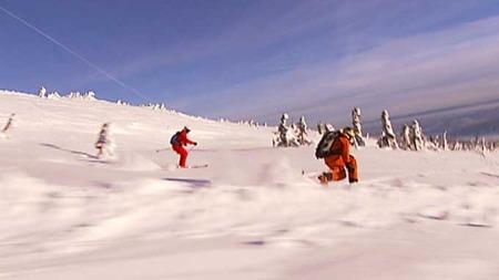På tross av værmeldingene strålte sola, og i det hvite teppet   gnistret snøkrystallene. (Foto: Erik Lundby / TV 2)