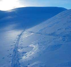 Har du en fridag til gode bør du ta den nå. Det er masse snø og flotte forhold i fjellet.  (Foto: Ronald Toppe)