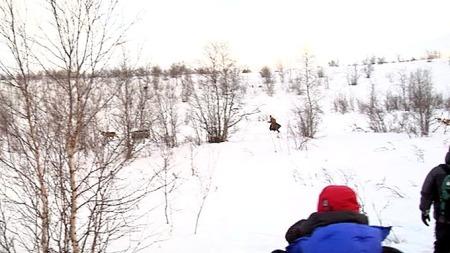 Her springer kromprinsen så fort han kan for å ta igjen det sledetrekkende reinsdyret. (Foto: Jørn Berger Nyvoll, ©TV 2)