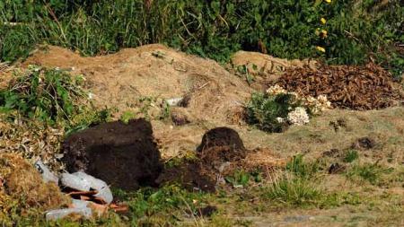 En slik avfallshaug er et ideelt gjemmested for iberiaskogsneglen. (Foto: Arild Andersen)