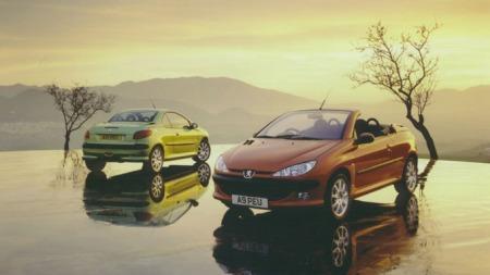 Peugeot 206 CC (Foto: Newspress)
