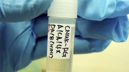 En forsker ved National University's College of Veterinary   Medicine i Sør-Korea viser fram en beholder som inneholder en virusstamme   fra svineinflusensaviruset. (Foto: YONHAP/EPA)