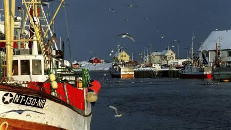 Norsk fiskeri har klart å bli bærekraftig, og nå vil forskerne fortelle EU hvordan vi har klart det. (Arkivfoto). (Foto: Roald, Berit/SCANPIX)