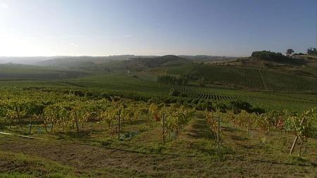 vin, estramadura, portugal (Foto: TV 2)