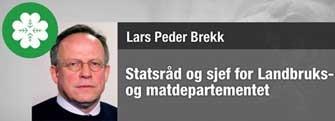 Brekk