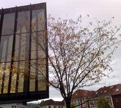 Rustrøde Grieghallen i Bergen står i stil med løvet. (Foto: Ronald Toppe)