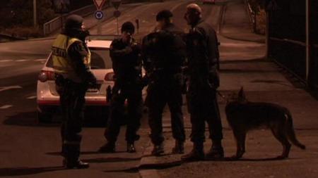 Store politistyrker var på plass på Jeløya utenfor Moss da et grovt boliginnbrudd ble avverget.