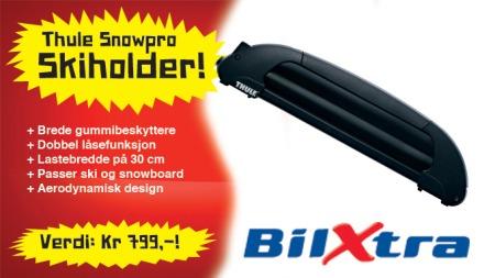 04 Skiholder Thule b