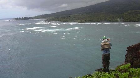 HAWAII, Maui Luau. (Foto: Wikimedia)