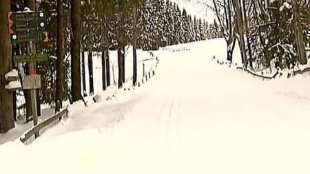 POPULÆRT TUROMRÅDE: Faiza Ashraf (26) ble funnet like ved en skiløype på Solli i Asker.  (Foto: TV 2)