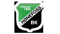 nor_honefoss_327_logo_1251098263847