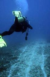 SÅR: En dykker undersøker et sår i Great Barrier Reef på en kilometer som det kinesiske lasteskipet skal ha forårsaket. (Foto: AP Photo/Great Barrier Reef Marine Park Authority)