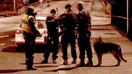 Store politistyrker var på plass på Jeløya utenfor Moss da et grovt ran mot en bolig ble avverget.