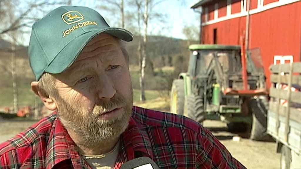 SINT: Bonde Dag Fossen har vært medlem av Senterpartiet lenge. Han mener Arbeiderpartiet heller kan velge Høyre, etter dagens jordbrukstilbud. (Foto: Bjørn Roger Brevik/TV 2)