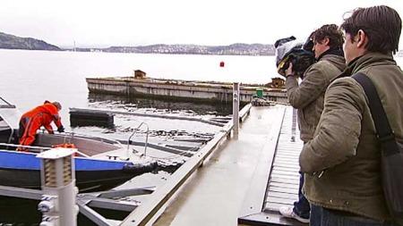 FILMER: To franskmenn er i Norge for å dokumentere forhold ved   oppdrettsnæringen. (Foto: TV 2)