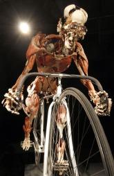 syklist kunst (Foto: FOCKE STRANGMANN, ©cp)