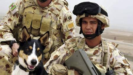 MISTET LIVET: Darren Smith var en av to australske soldater som mistet livet i eksplosjon i Afghanistan mandag. (Foto: AUSTRALIAN DEPARTMENT OF DEFENCE/Afp)