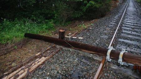 STJAL KJØRELEDNING: Stolpene som holder kjøreledningen er kuttet av. Nærmere 500 meter med kobber ble stjålet fra jernbanelinjen. (Foto: Politiet)