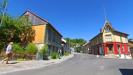 Damhaugen (Foto: TV 2/Magnus Nøkland)