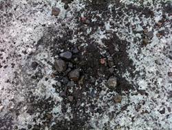 Det falt mye aske og stein ned over Myrdalsjökul. (Foto: Ronald Toppe)