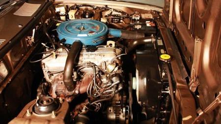 motor (Foto: Privat)