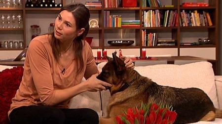 - Lær deg å kjenne igjen lukten i øret på hunden din, anbefaler   villdyrlegen Silje Hvernes. Da kan du oppdage ørebetennelse på et tidlig   stadium. (Foto: God morgen Norge)