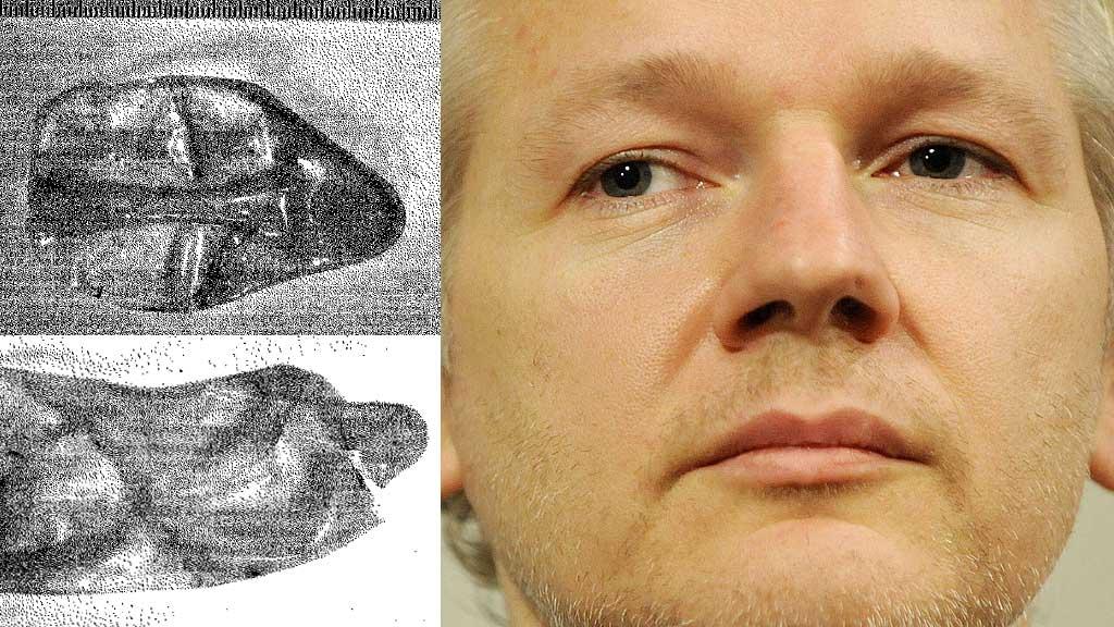 Kondombilder politirapport Julian Assange (Foto: Politiet/AFP montasje: TV 2)