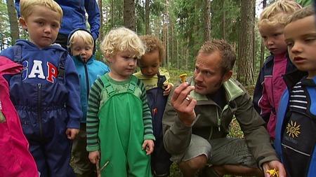 I barnehagen Ragnas Hage fokuserer de på å bruke naturen. (Foto:   Erik Manshaus)