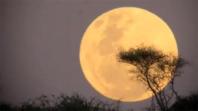 Lørdag er nymånen 14 prosent større enn når den er på sitt minste. (Foto: NASA)