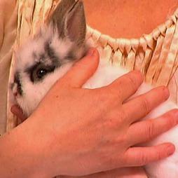 Husk at en kanin kan leve lenge, før du kjøper en. (Foto: TV 2)