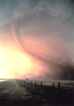 Tornadoer kan være vakre, men dødelige. Denne ble fotografert 22 mai 1981 i Oklahoma. (Foto: NSSL)