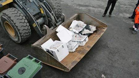 Den beslaglagte fiskefileten blir nå destruert og gravd ned ved Jupvik avfallsanlegg utenfor Narvik. (Foto: Politiet)