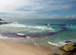 Det mørke området er dypere enn stranden rundt, her går den farlige strømmen. (Foto: NOAA)
