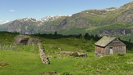 Jonstølen i Ulvik i Hordaland er ett av de verneverdige områdene Riksantikvaren vil beskytte. (Foto: Geir J. Huneide, TV 2)