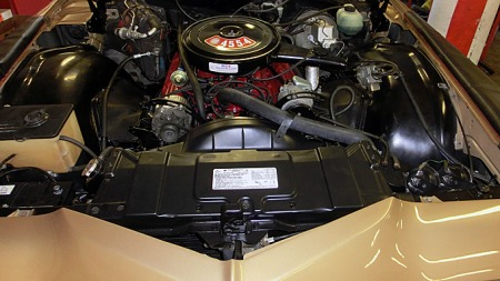 Motorrommet ser praktisk talt nytt ut i Glenns Riviera. Big block-motoren med 455 kubikktommers volum og fireports forgasser er et imponerende skue i seg selv. Foto: Privat