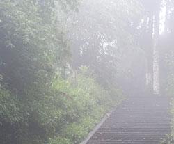 Duskregn er bare hakket over tåke. (Foto: Colourbox)