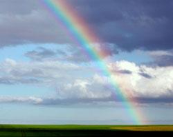 Regnbuen oppstår når lyset fra solen brytes i vanndråper i atmosfæren. (Foto: Colourbox)