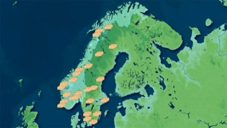 kartonlinecon (Foto: Grafikk)