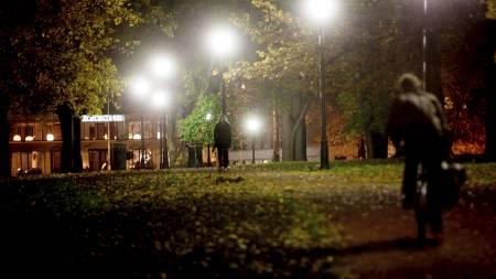 ADVARER MOT PARKENE: De fleste overfallsvoldtekter i Oslo skjer   i mørke parker, mot jenter som er beruset og går hjem alene. (Foto: Solum,   Stian Lysberg/SCANPIX)