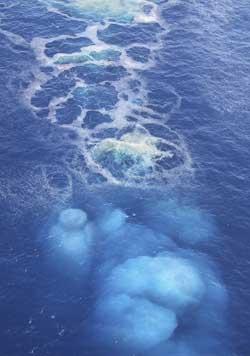 BOBLER OG SYDER: Gassen som kommer opp av havet sprer lukt inn over øygruppen. (Foto: Ap)