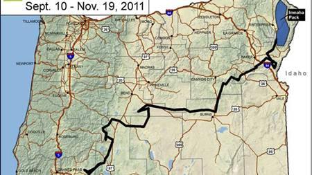 SIKK SAKK-VANDRING: Kartet viser hvor langt ulven har vandret. (Foto: Oregon Department of Fish and Wildlife/Ap)