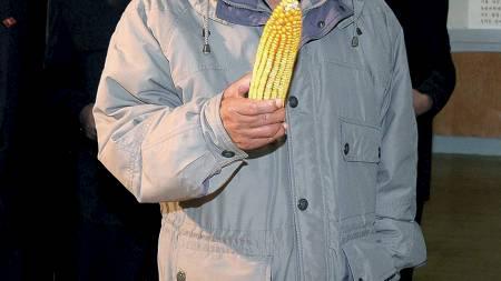 GLAD I MAT: Kim Jong-il skal ha nektet å spise annet enn mat produsert i sitt eget land. Ja, bortsett fra fransk vin og cognac. Her ser han på en mais. (Foto: KCNA/Reuters)